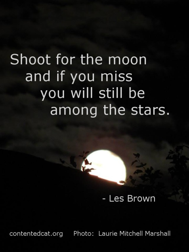 shootformoon